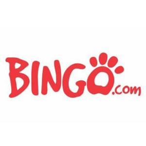 Bingo norge online
